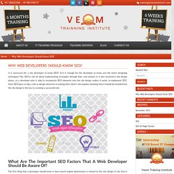 Important SEO On-Page Factors for Web Developers Should Be Aware Of