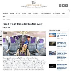 Important Tips For Flying with Fido - Travel Tips - UberPanache