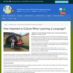 How Important is Culture When Learning a Language?