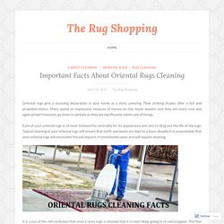 Important Facts About Oriental Rugs Cleaning – The Rug Shopping