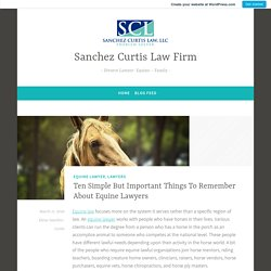 Ten Simple But Important Things To Remember About Equine Lawyers – Sanchez Curtis Law Firm