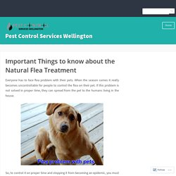 Important Things to know about the Natural Flea Treatment – Pest Control Services Wellington