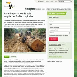Pas d'importation de bois au prix des forêts tropicales