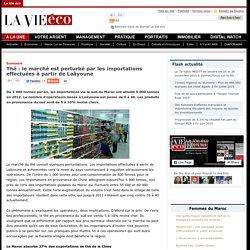 Thé : le marché est perturbé par les importations effectuées à partir de Laâyoune