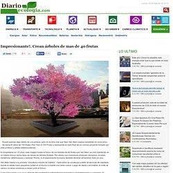 Impresionante!. Crean árboles de mas de 40 frutas