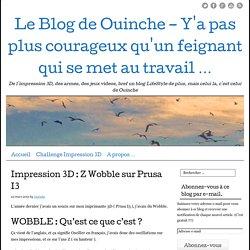 Le Blog de Ouinche - Y'a pas plus courageux qu'un feignant qui se met au travail ...