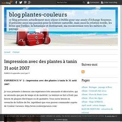 Impression avec des plantes à tanin 31 août 2007 - blog plantes-couleurs