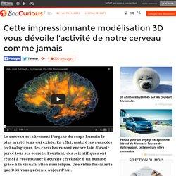 Cette impressionnante modélisation 3D vous dévoile l'activité de notre cerveau comme jamais