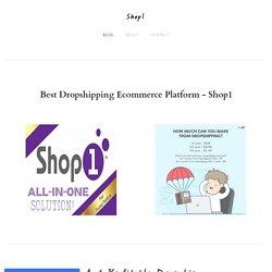 An Impressive And Profitable Dropship Website - Shop1