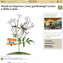 Want to improve your gardening? Learn a little Latin