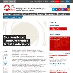 Slash-and-burn 'improves tropical forest biodiversity'