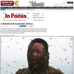 In Focus - The Atlantic