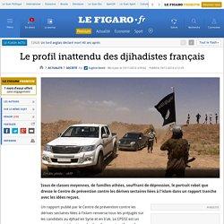 Le profil inattendu des djihadistes français