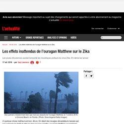Les effets inattendus de l'ouragan Matthew sur le Zika