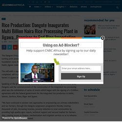 Rice Production: Dangote Inaugurates Multi Billion Naira Rice Processing Plant in Jigawa...Promises to End Rice Importation