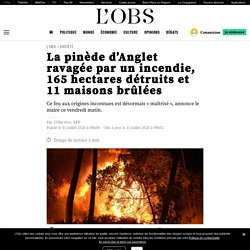 La pinède d'Anglet ravagée par un incendie, 165 hectares détruits et 11 maisons brûlées Publié le 31 juillet 2020