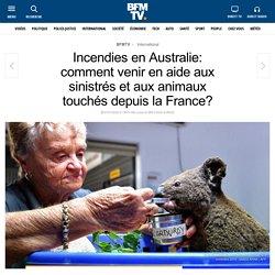 Incendies en Australie: comment venir en aide aux sinistrés et aux animaux touchés depuis la France?