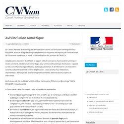 Avis inclusion numérique – Conseil National du Numérique