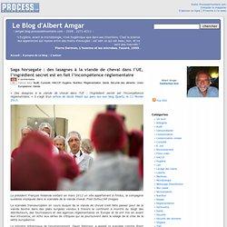 BLOG D ALBERT AMGAR 12/02/13 Saga horsegate : des lasagnes à la viande de cheval dans l'UE, l'ingrédient secret est en fait l'in