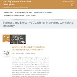 Business and Executive Coaching: Increasing workplace efficiency
