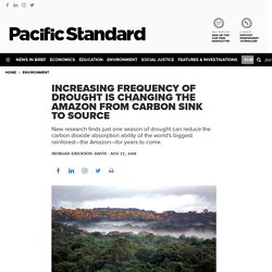 Increasing Frequency of Drought Is Changing the Amazon From Carbon Sink to Source - Pacific Standard