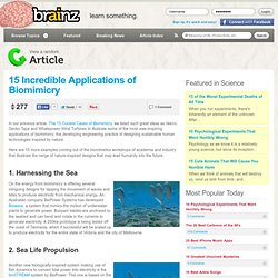 Current Interest - 15 Incredible Applications of Biomimicry
