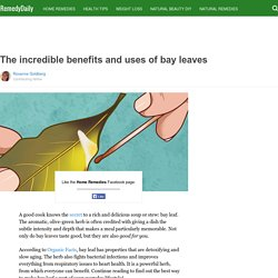 The incredible benefits and uses of bay leaves