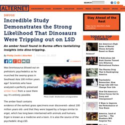 Incredible Study Demonstrates the Strong Likelihood That Dinosaurs Were Tripping out on LSD