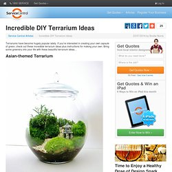 Incredible DIY Terrarium Ideas