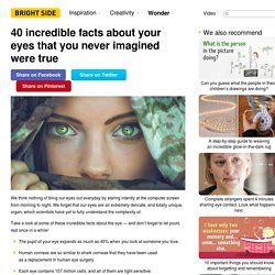 40 incredible facts about your eyes that you never imagined were true