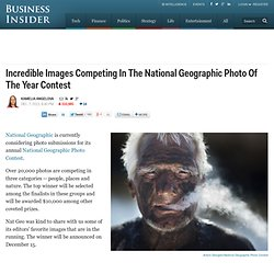 Incredible Images Competing In The National Geographic Photo Of The Year Contest