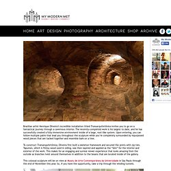Incredible Man-Made Tunnels Formed with Wires & Repurposed Wood - My Modern Met