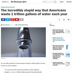The incredibly stupid way that Americans waste 1 trillion gallons of water each year