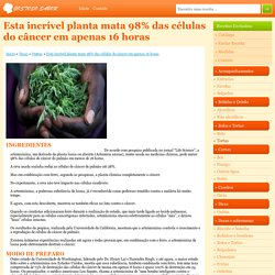 Esta incrível planta mata 98% das células do câncer em apenas 16 horas - Gostoso Sabor