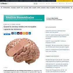 Quand le cerveau révèle une incroyable capacité de résilience – Réalités Biomédicales
