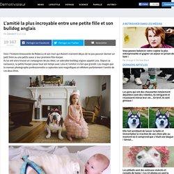 L'amitié la plus incroyable entre une petite fille et son bulldog anglais