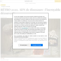ADN de dinosaure : l'incroyable découverte