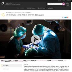 L'incroyable histoire des greffes d'organes