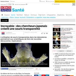 Incroyable : des chercheurs japonais créent une souris transparente