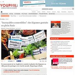 """""""Incroyables comestibles"""": des légumes gratuits en plein Paris"""