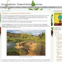 Incroyables Comestibles Castres: Techniques et avantages de la Culture sur Buttes.