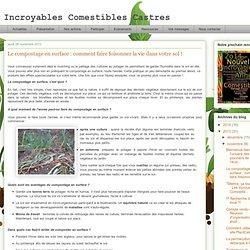 Le compostage en surface : comment faire foisonner la vie dans votre sol !