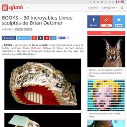 BOOKS – 30 incroyables Livres sculptés de Brian Dettmer