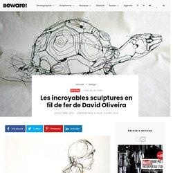 Les incroyables sculptures en fil de fer de David Oliveira