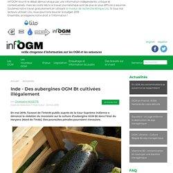 Inde - Des aubergines OGM Bt cultivées