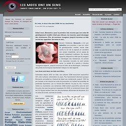LES MOTS ONT UN SENS 15/03/10 En Inde, le doux rêve des OGM vire au cauchemar inde coton bt ogm resistance maladie 7281