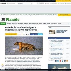 En Inde, le nombre de tigres a augmenté de 30% depuis2010