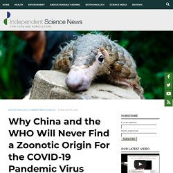 Why China and the WHO Will Never Find a Zoonotic Origin For the COVID-19 Pandemic Virus - Independent Science News