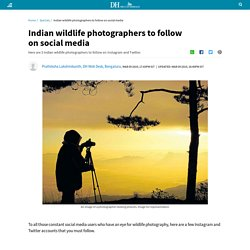 Indian wildlife photographers to follow on social media
