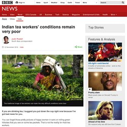 Indian tea workers' conditions remain very poor